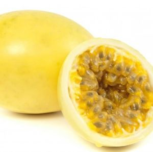 Passiflora Panama Gold 02