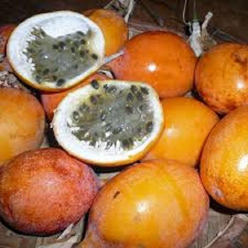 Passionfruit Golden Nugget0